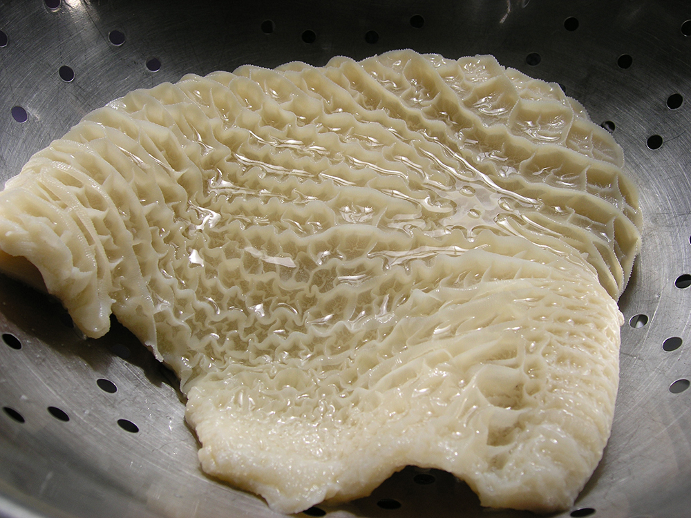 Tripe | Tagalog Meaning of Tripe